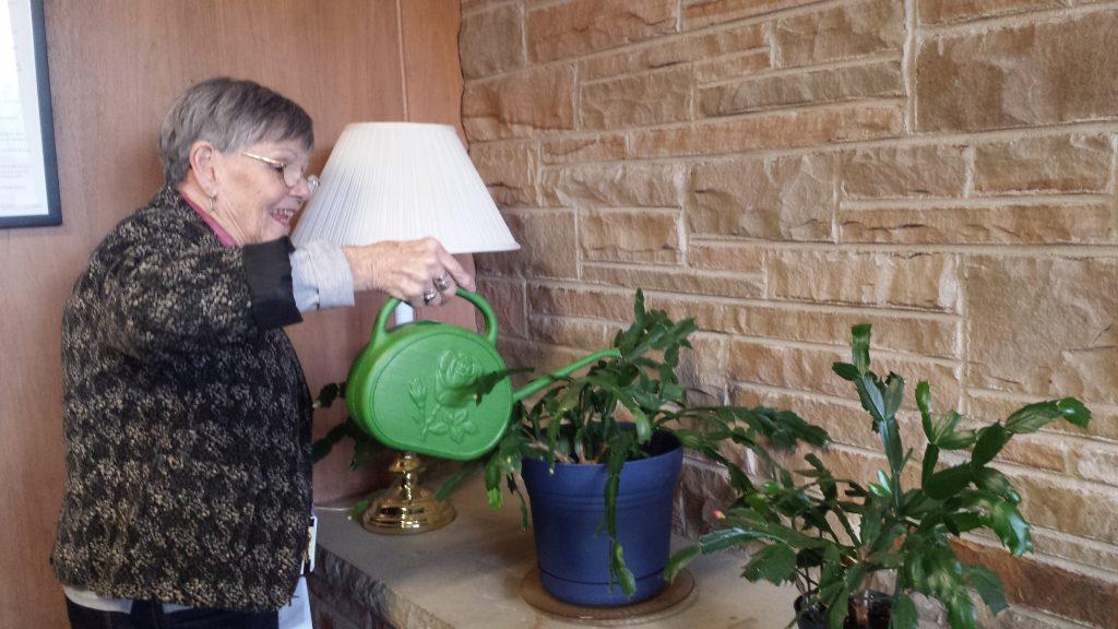 plant care volunteer